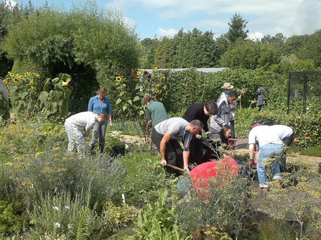 The Therapy Garden is a registered charity based in Normandy Village, consisting of one acre of community garden which is managed by a team of ...