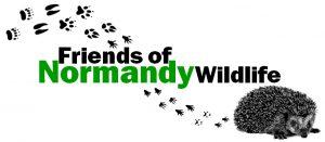 Friends of Normandy Wildlife