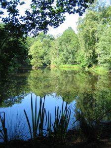 Normandy_Village_Pond