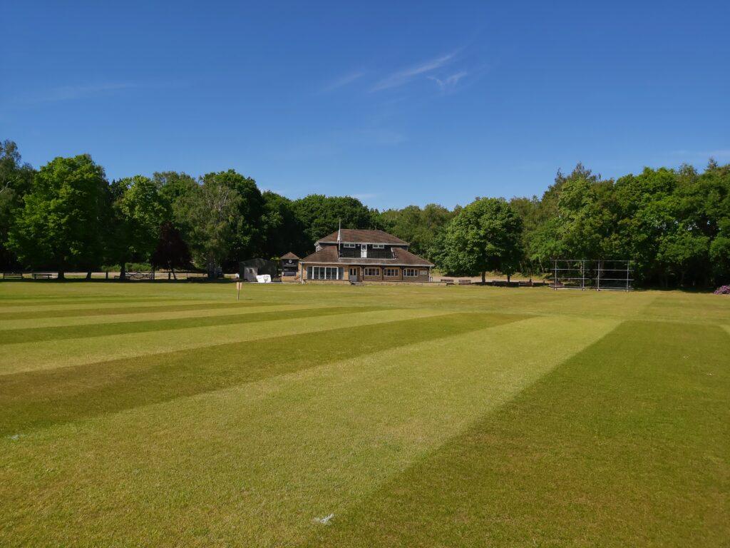 Cricket Club new